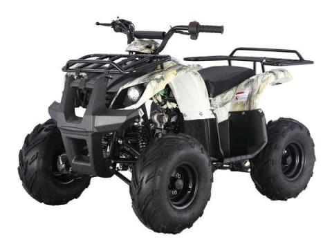 2015 Taotao USA 125 Automatic Kids quad in Howell, Michigan - Photo 4