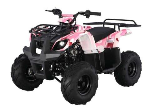 2015 Taotao USA 125 Automatic Kids quad in Howell, Michigan - Photo 5