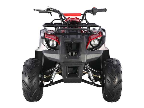 2015 Taotao USA 125 Automatic Kids quad in Howell, Michigan - Photo 7