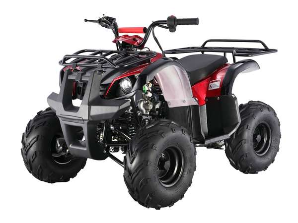 2015 Taotao USA 125 Automatic Kids quad in Howell, Michigan - Photo 8