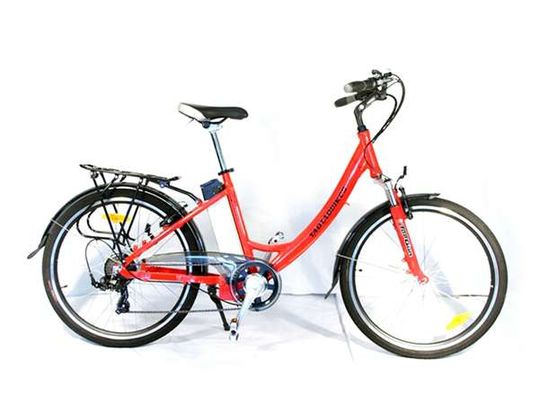 2015 Taotao USA TDE203Z Electric bike in Howell, Michigan