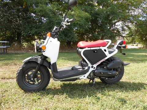 2017 Honda Ruckus in Howell, Michigan - Photo 1