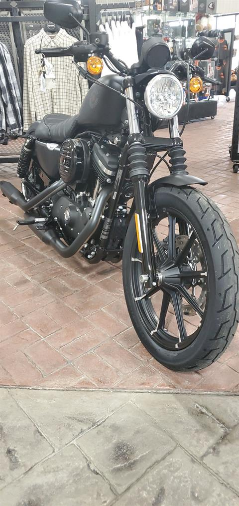 2020 Harley-Davidson Iron 883™ in Cayuta, New York - Photo 2