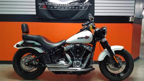 2018 Harley-Davidson Softail Slim® 107 in Cayuta, New York - Photo 1