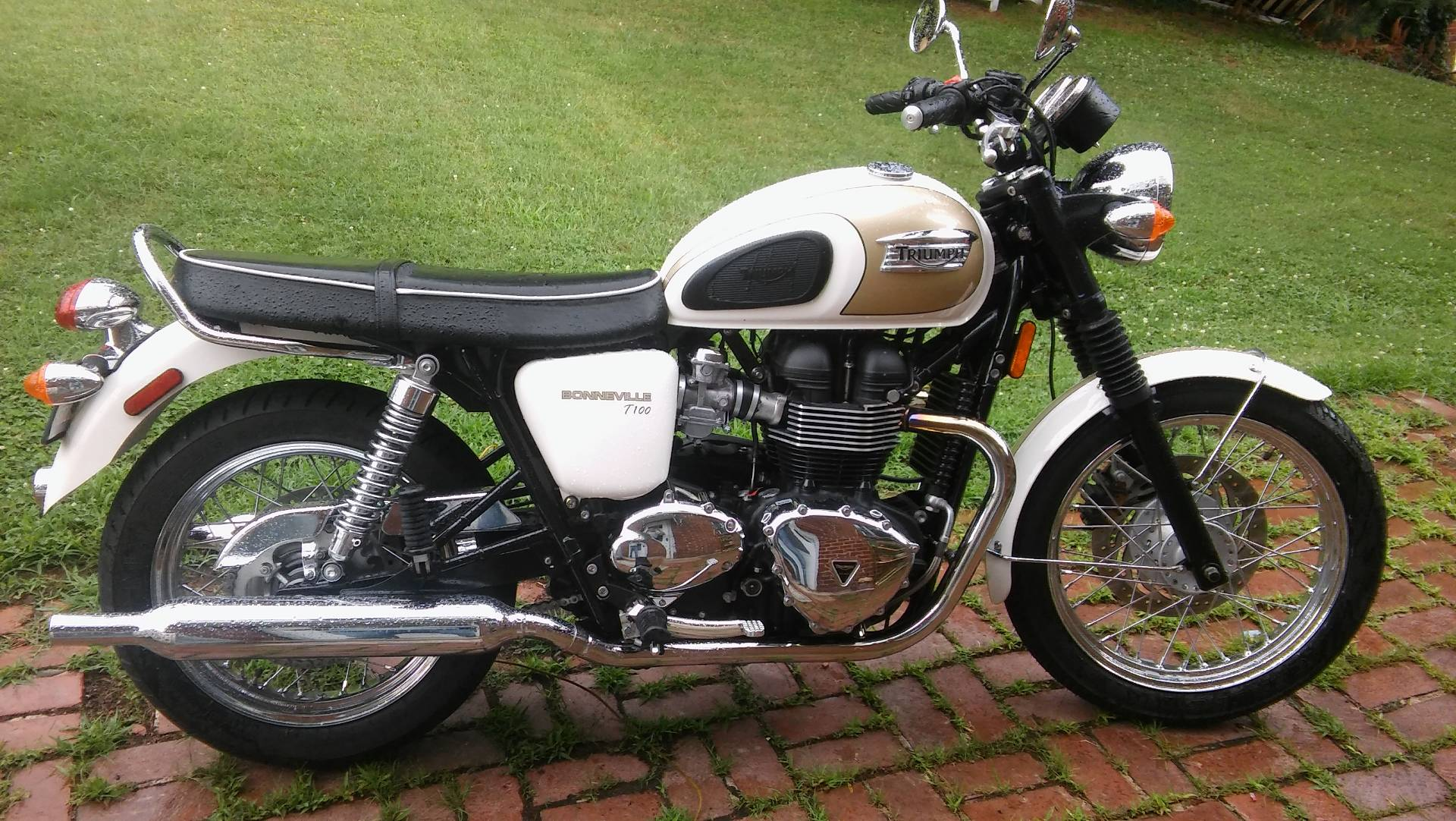 2016 Triumph Bonneville T100 in Ashland, Kentucky