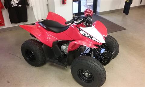 2019 Honda TRX90X in Manitowoc, Wisconsin - Photo 1