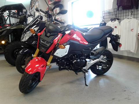 2019 Honda Grom in Manitowoc, Wisconsin - Photo 1