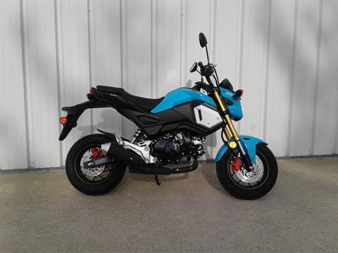 2019 Honda Grom in Manitowoc, Wisconsin - Photo 3