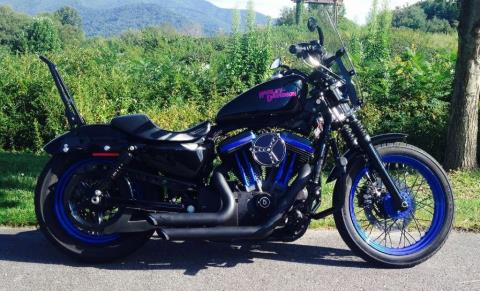 2008 Harley-Davidson XL1200N in Waynesville, North Carolina - Photo 2