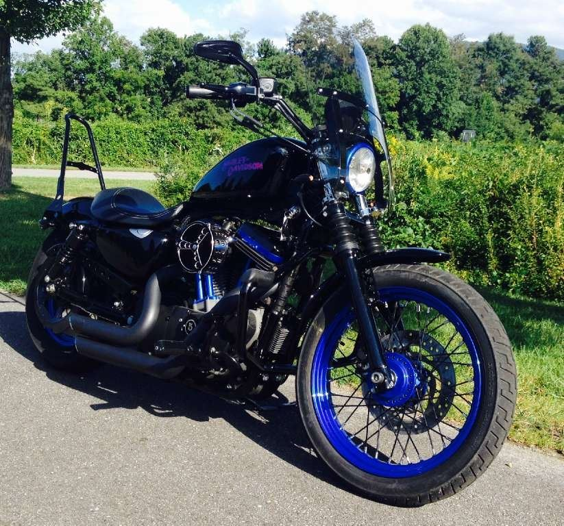 2008 Harley-Davidson XL1200N in Waynesville, North Carolina