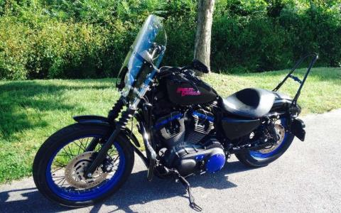 2008 Harley-Davidson XL1200N in Waynesville, North Carolina - Photo 6