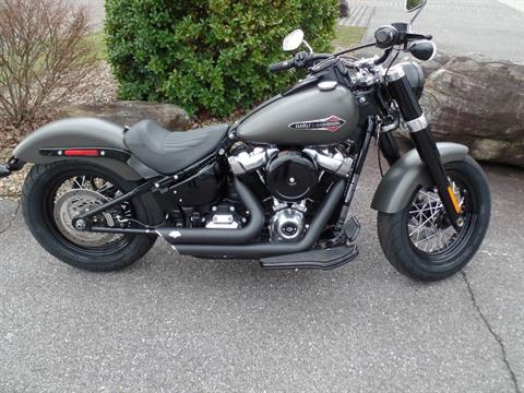 2018 Harley-Davidson Softail Slim® 107 in Waynesville, North Carolina - Photo 1