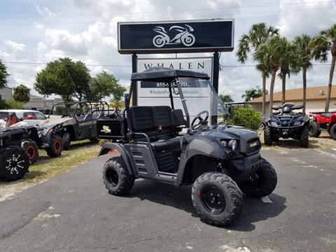 2017 Hammerhead Off-Road R-150 in Port Charlotte, Florida