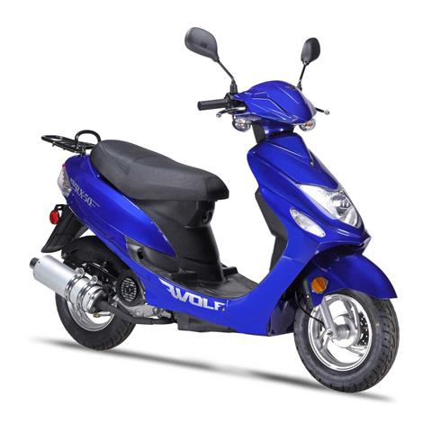 2021 Wolf Brand Scooters RX50 in Coloma, Michigan