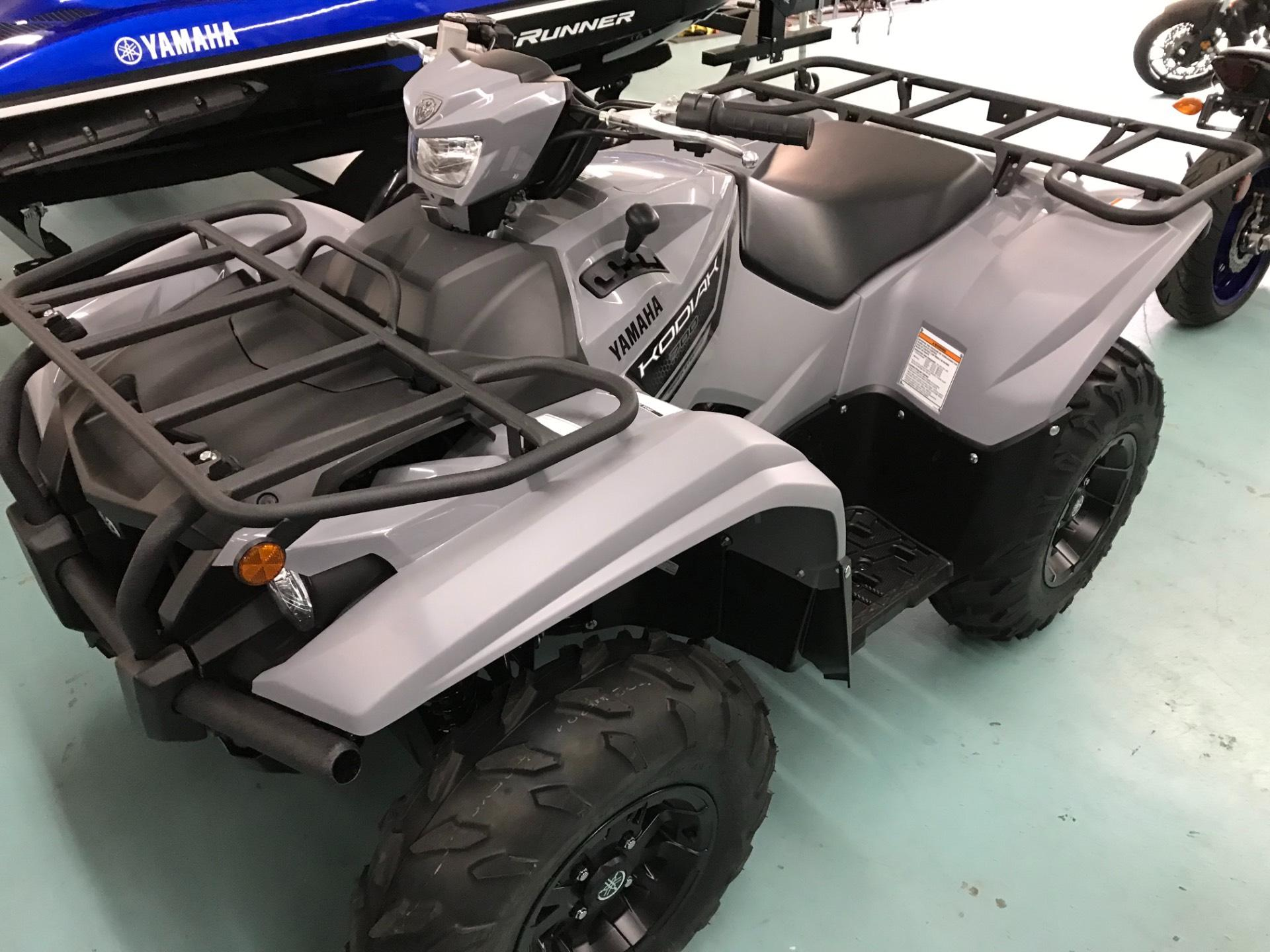 2019 Yamaha Kodiak 700 EPS in Coloma, Michigan - Photo 3