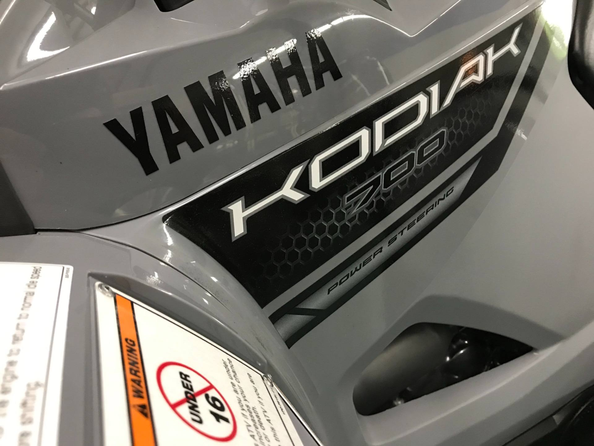 2019 Yamaha Kodiak 700 EPS in Coloma, Michigan - Photo 5