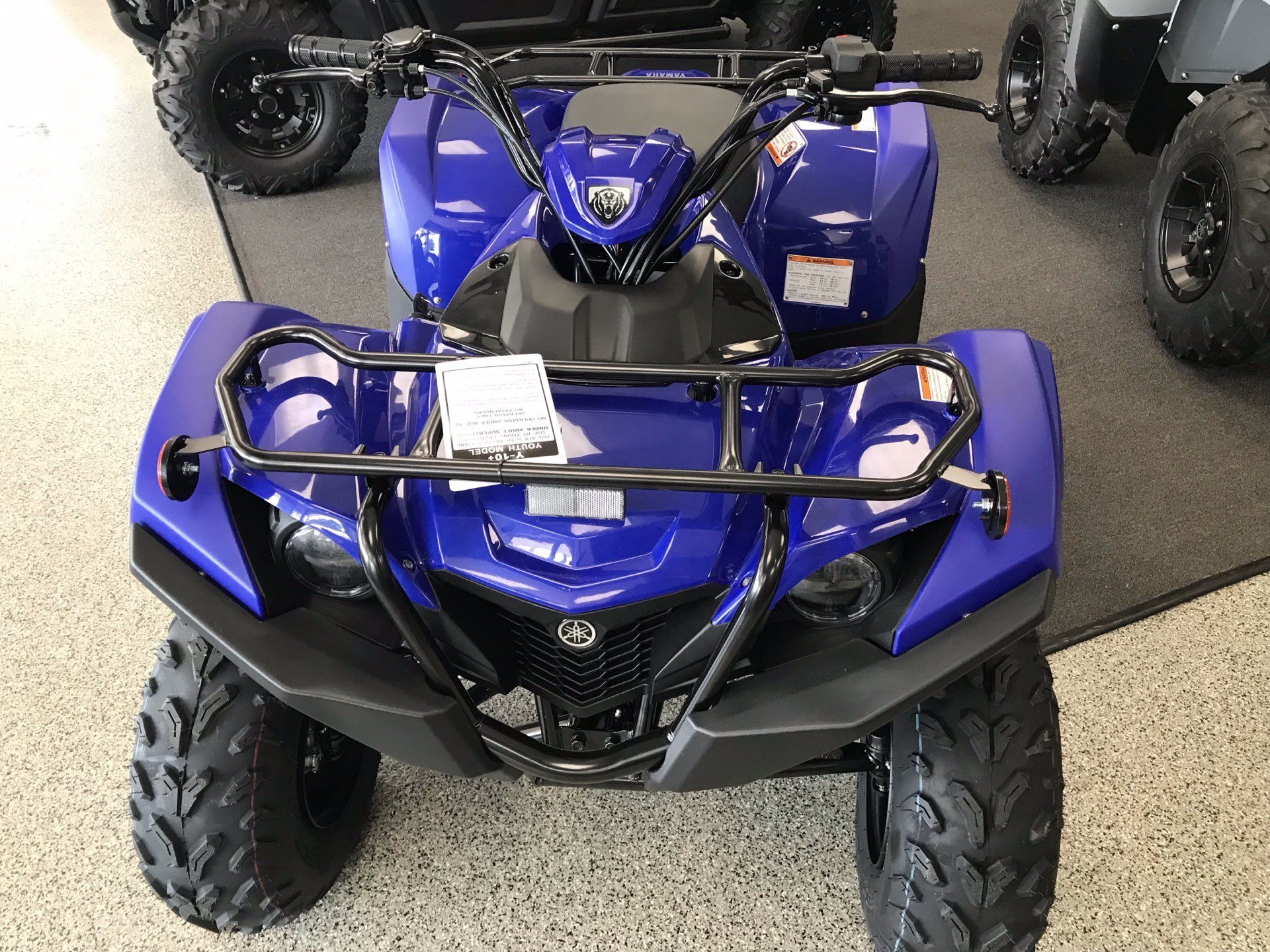 2020 Yamaha Grizzly 90 in Coloma, Michigan - Photo 3