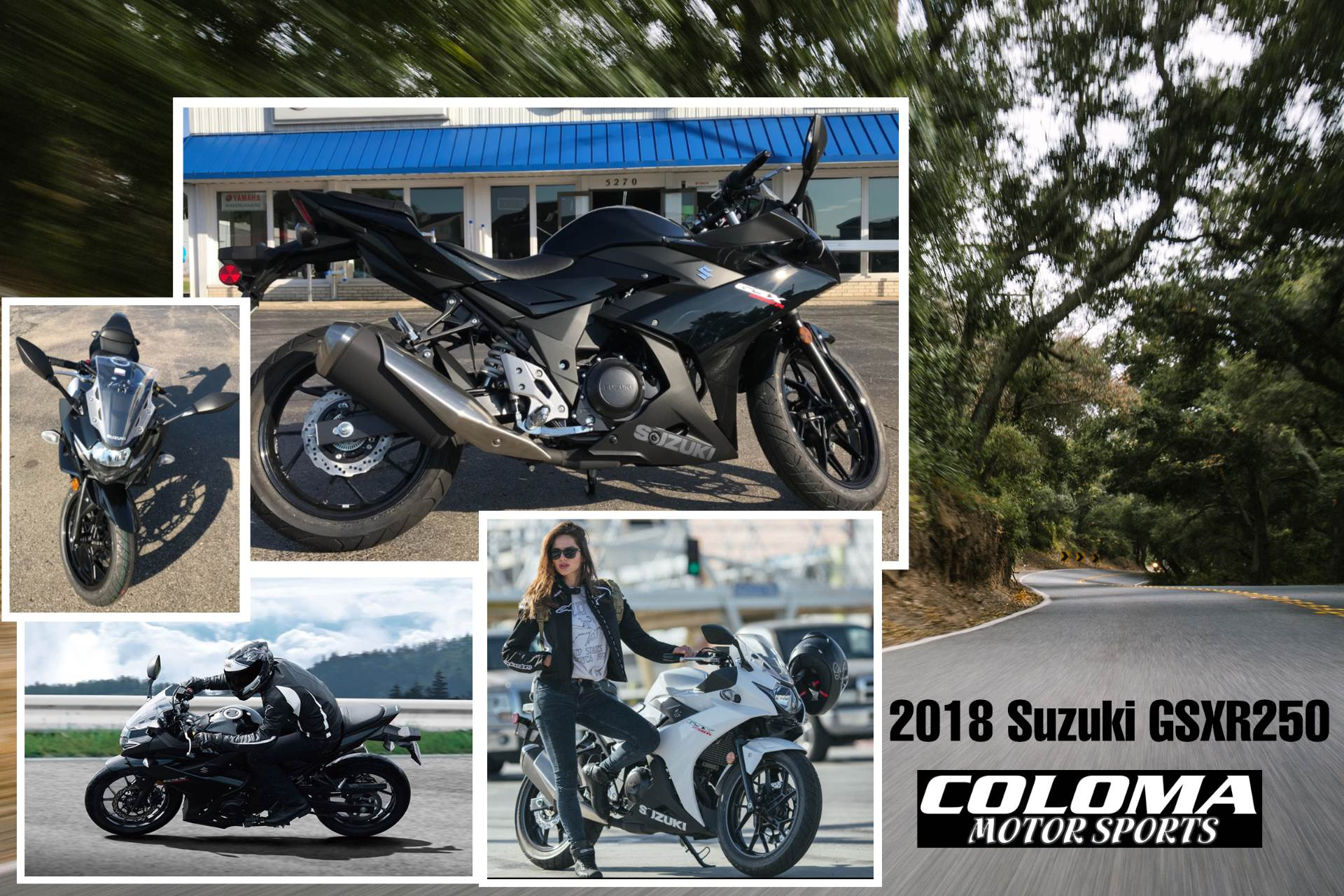 2018 Suzuki GSX250R in Coloma, Michigan - Photo 8