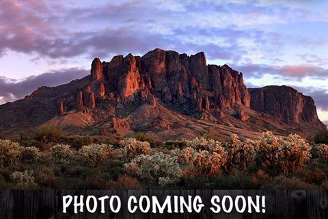 2017 Harley-Davidson Road Glide® Ultra in Apache Junction, Arizona