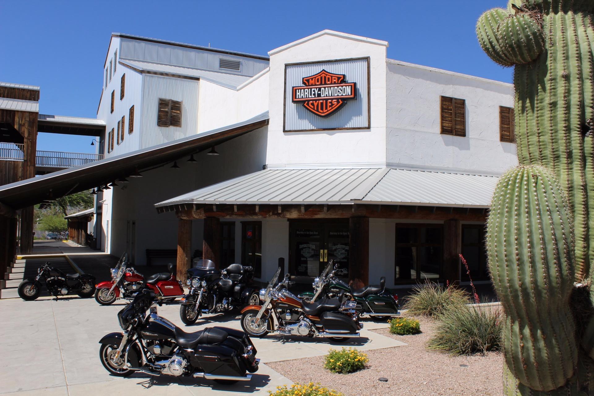 2015 Harley-Davidson Street Bob® in Apache Junction, Arizona