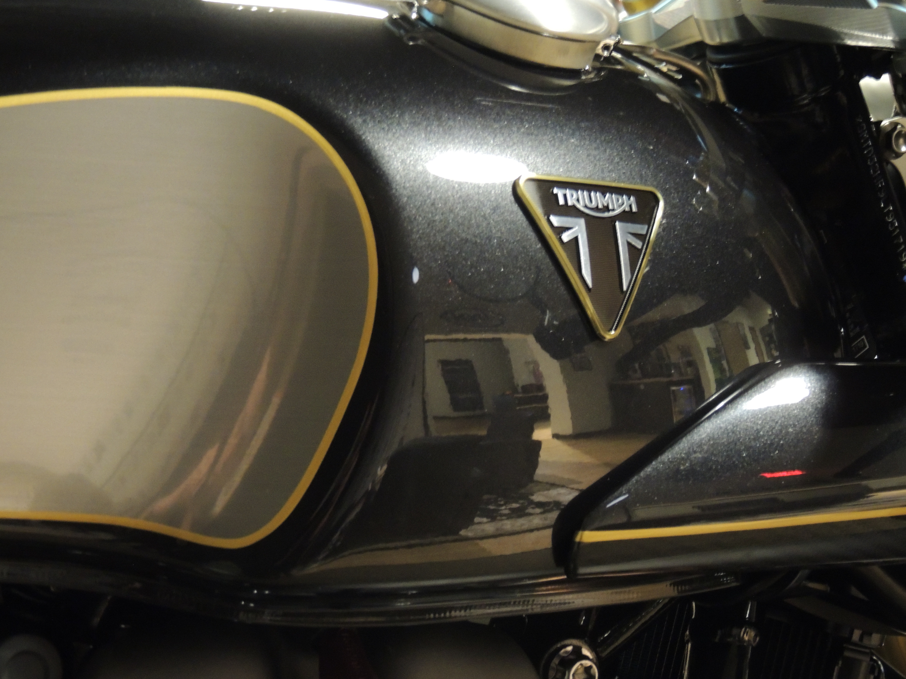 2020 Triumph Thruxton TFC in Shelby Township, Michigan - Photo 6