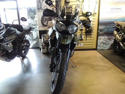 2019 Triumph Tiger 800 XCx in Shelby Township, Michigan - Photo 8
