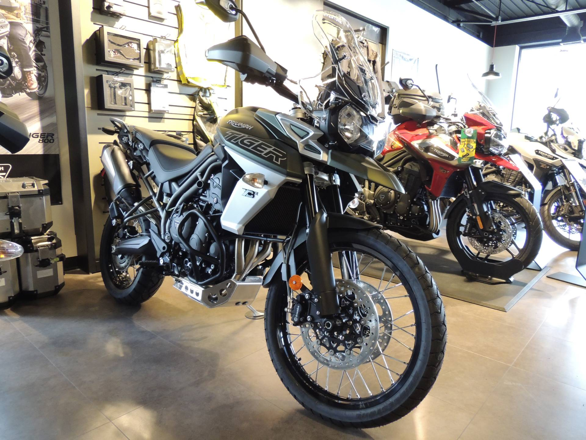 2019 Triumph Tiger 800 XCx in Shelby Township, Michigan - Photo 1