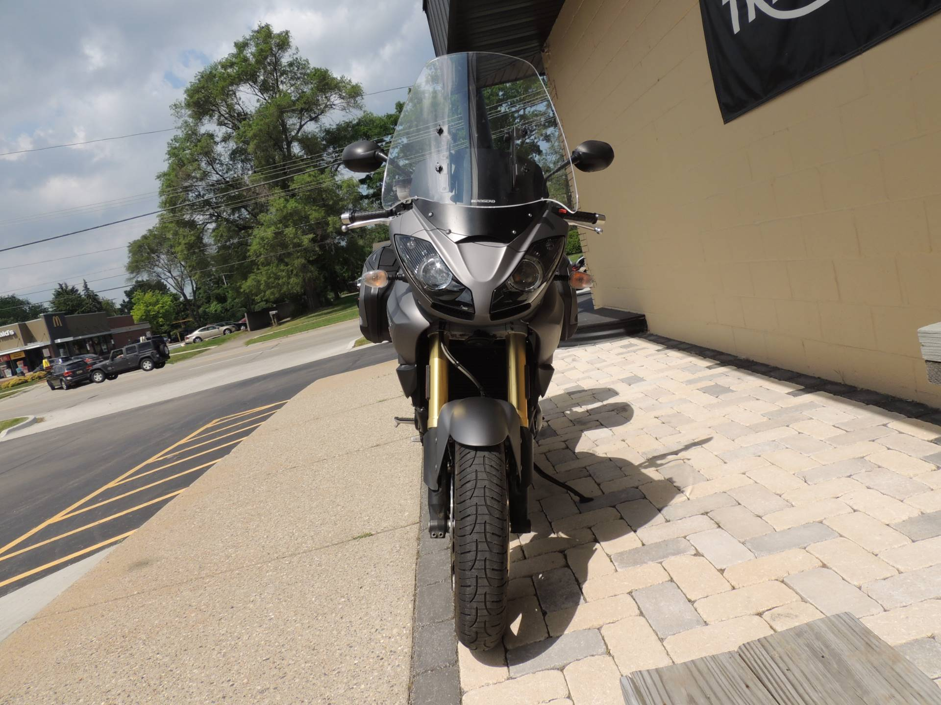 2011 Triumph Tiger 1050 ABS SE in Shelby Township, Michigan - Photo 9