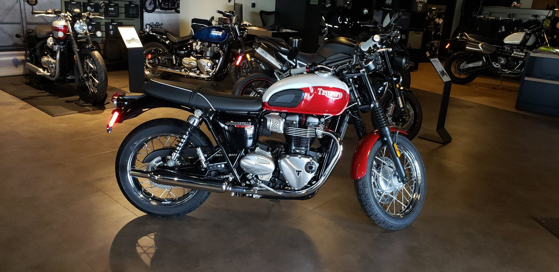 2020 Triumph Bud Ekins T100 in Shelby Township, Michigan - Photo 1