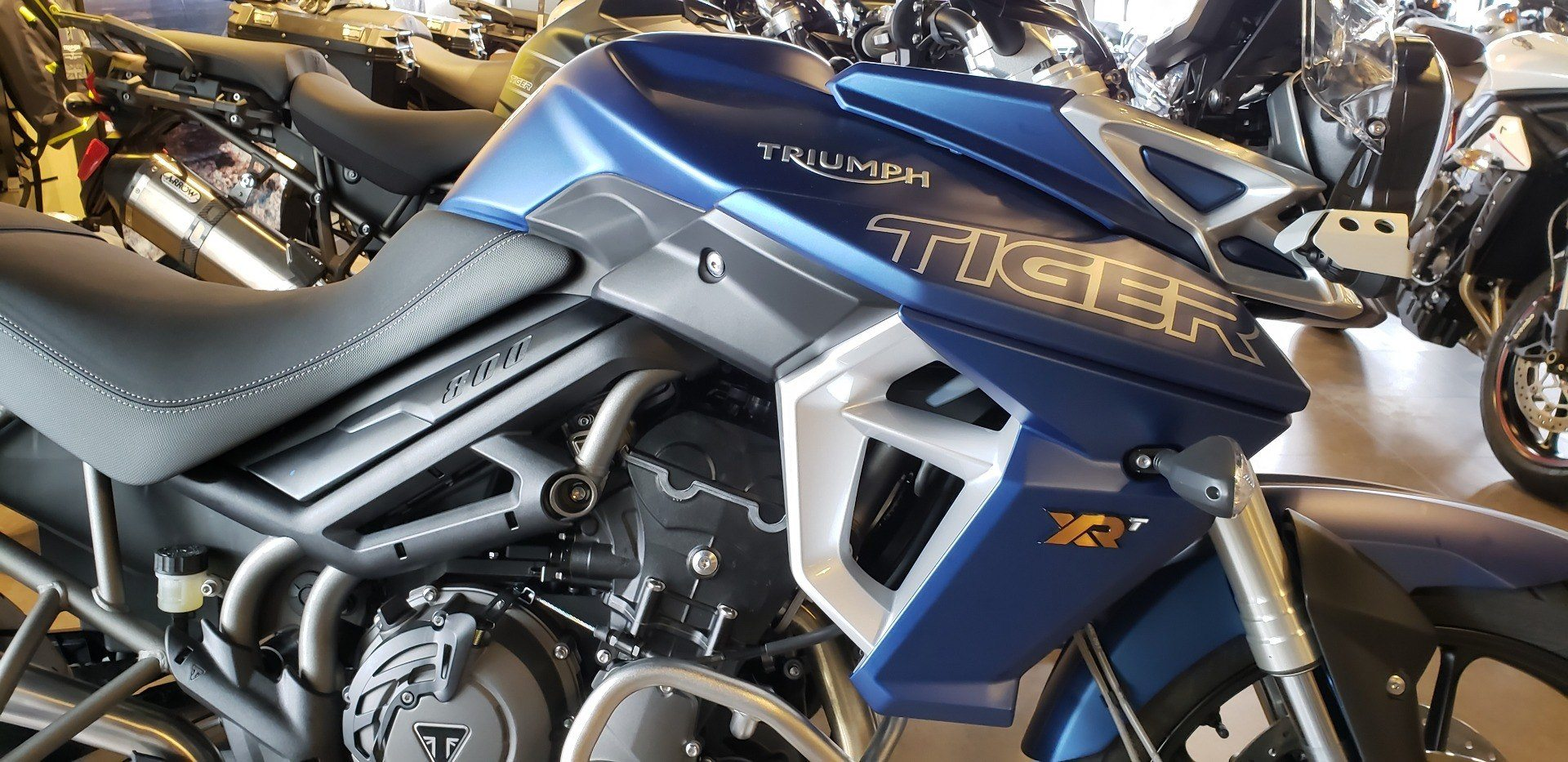New 2019 Triumph Tiger 800 Xrt Motorcycles In Shelby Township Mi
