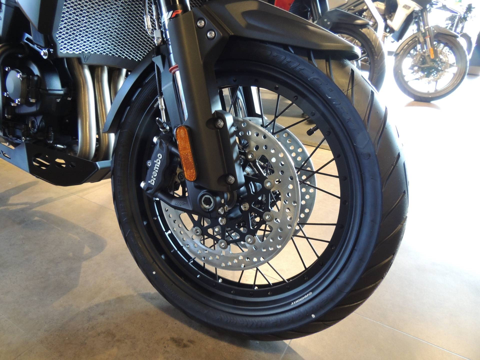 2020 Triumph Tiger 1200 Desert Edition in Shelby Township, Michigan - Photo 12