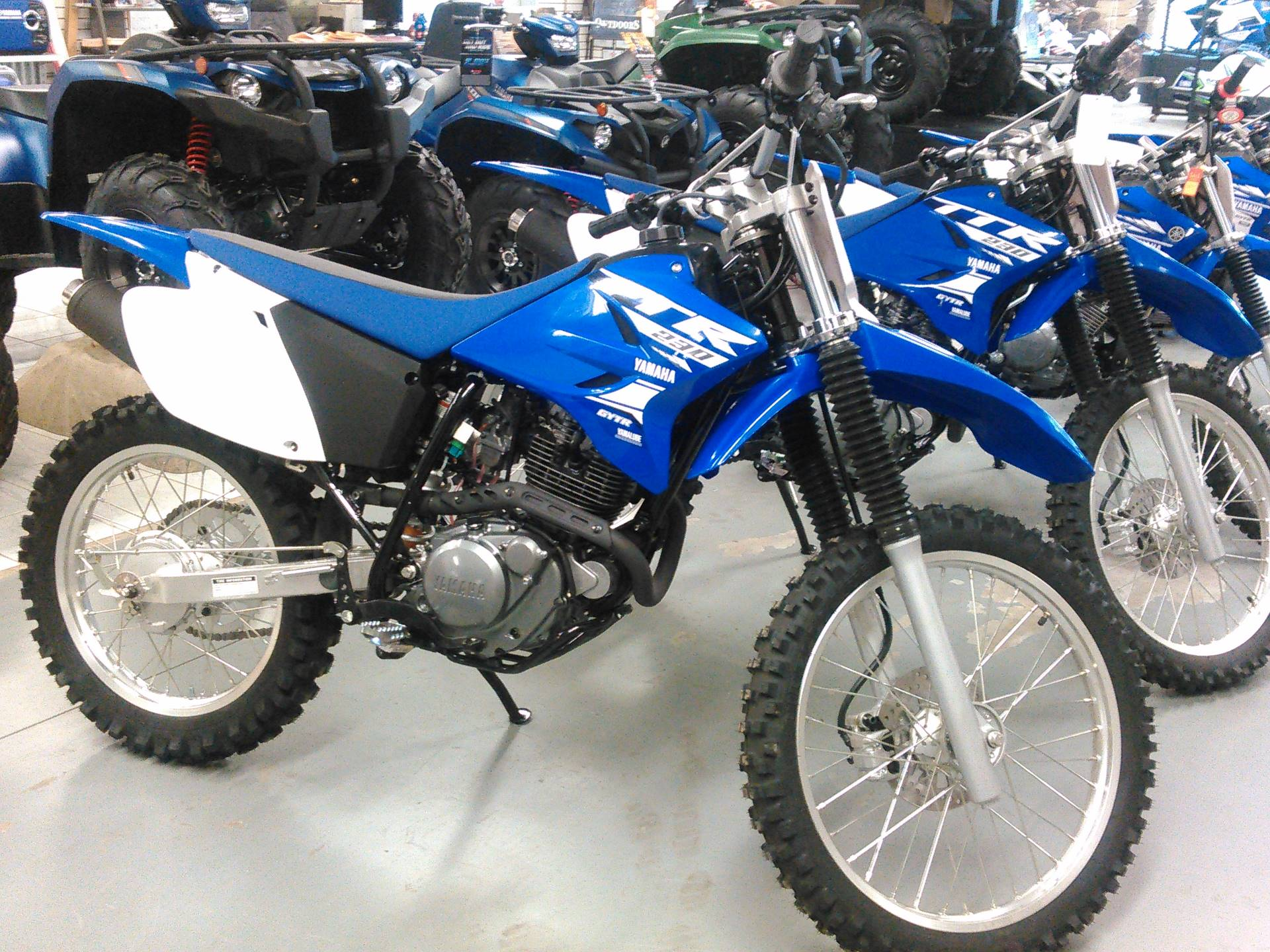 2018 Yamaha TT-R230 in Johnson Creek, Wisconsin - Photo 2