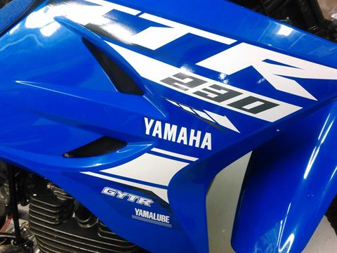 2018 Yamaha TT-R230 in Johnson Creek, Wisconsin - Photo 3