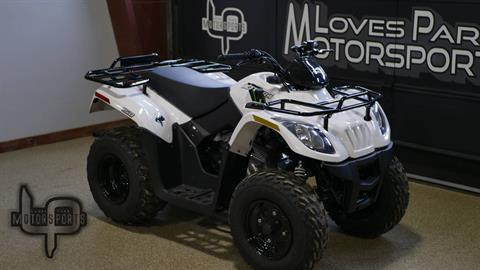 2018 Textron Off Road Alterra 150 in Roscoe, Illinois - Photo 2