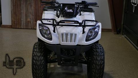 2018 Textron Off Road Alterra 150 in Roscoe, Illinois - Photo 4
