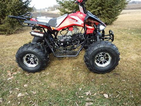 2017 Coolster ATV-3125CX-3 in Howard Lake, Minnesota