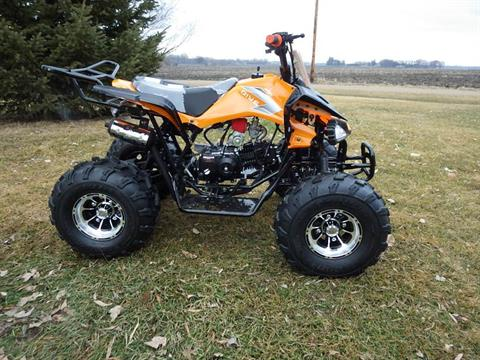 2017 Coolster ATV-3125CX3 in Howard Lake, Minnesota