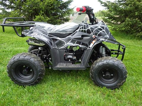 2017 Coolster ATV-3050C in Howard Lake, Minnesota