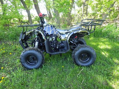2017 Coolster ATV-3125R in Howard Lake, Minnesota