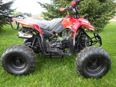 2016 Coolster ATV-3050B in Howard Lake, Minnesota