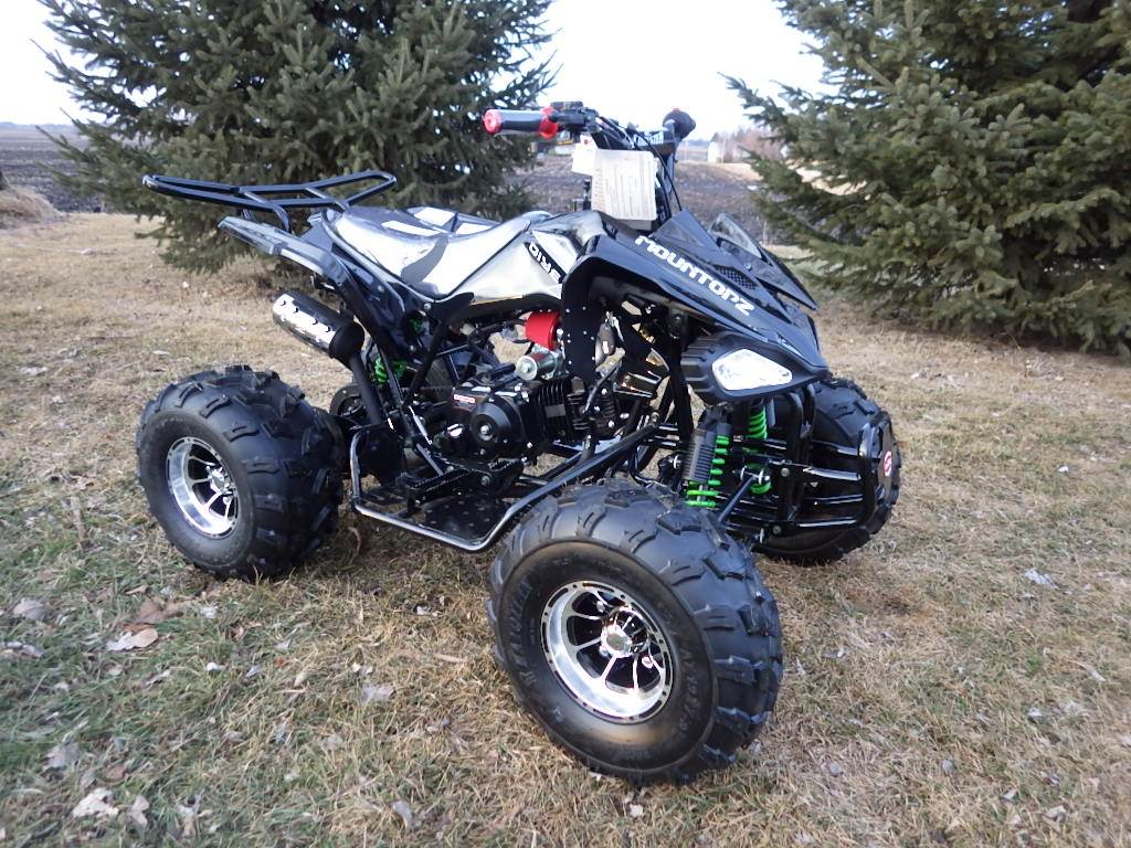 2017 Coolster ATV-3125CX-3 in Howard Lake, Minnesota - Photo 2