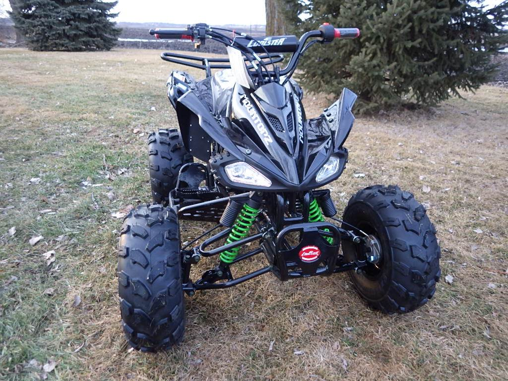 2017 Coolster ATV-3125CX-3 in Howard Lake, Minnesota - Photo 3