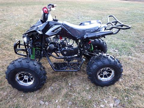 2017 Coolster ATV-3125CX-3 in Howard Lake, Minnesota - Photo 5