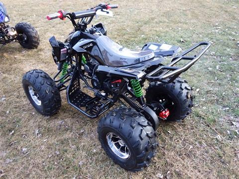 2017 Coolster ATV-3125CX-3 in Howard Lake, Minnesota - Photo 6