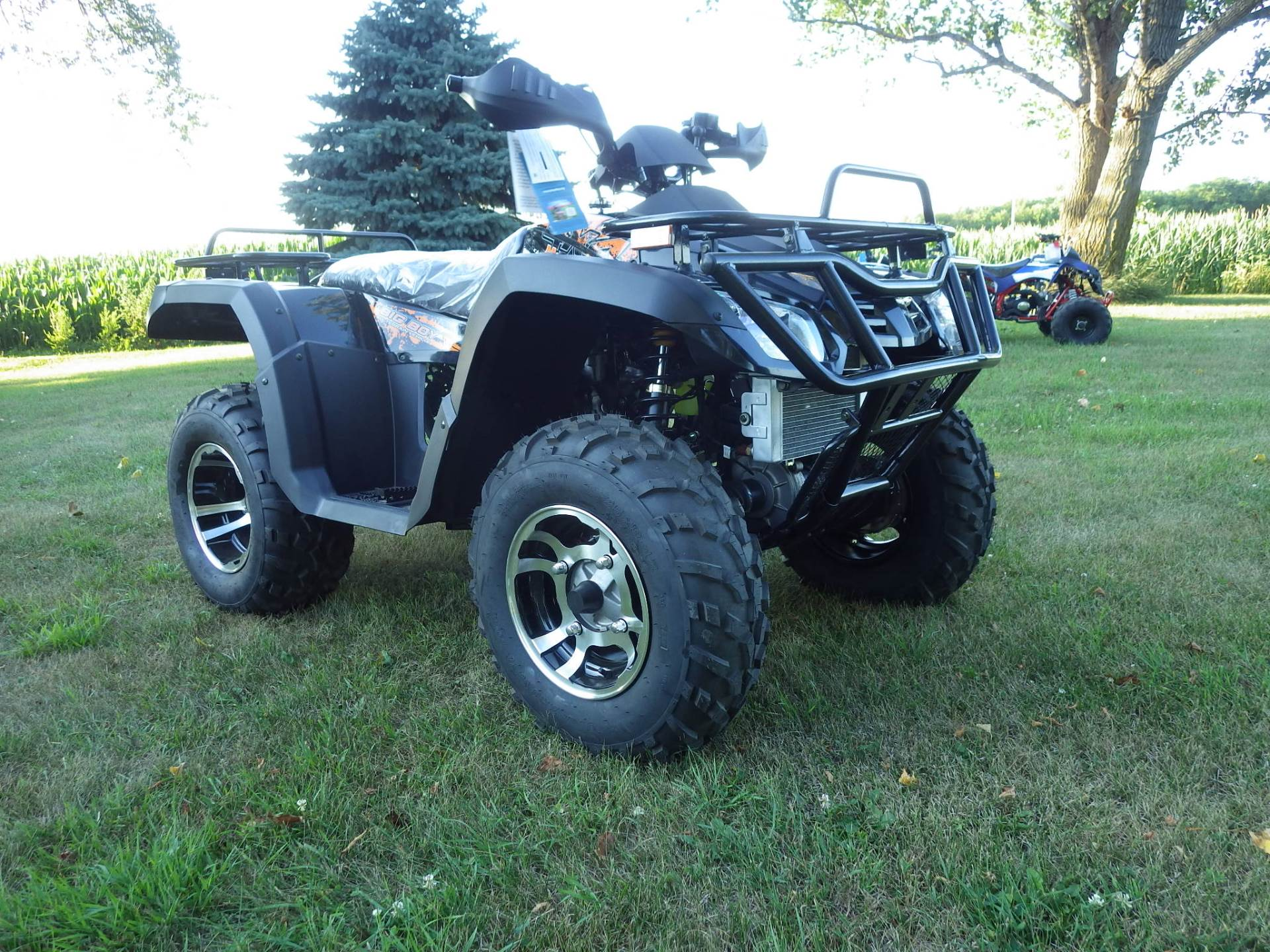 2016 Buyang MONSTER 300 4x4 in Howard Lake, Minnesota