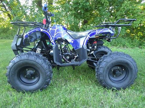 2017 Coolster ATV-3125XR8U in Howard Lake, Minnesota