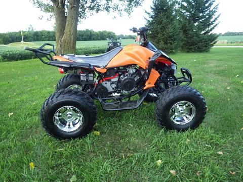 2017 Coolster ATV-3150CXC in Howard Lake, Minnesota
