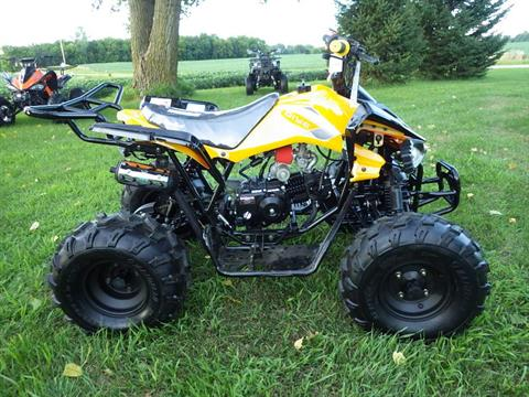 2017 Coolster ATV-3125CX-2 in Howard Lake, Minnesota - Photo 1