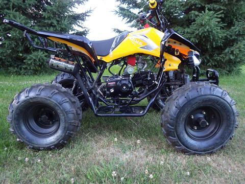 2017 Coolster ATV-3125CX-2 in Howard Lake, Minnesota - Photo 2