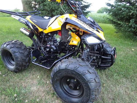 2017 Coolster ATV-3125CX-2 in Howard Lake, Minnesota - Photo 3